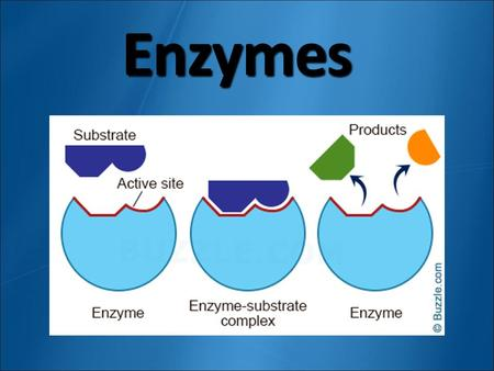 Enzymes. Chemical Reactions Process that changes one set of chemicals into another set Slow = iron & oxygen = Fast = fireworks RUST.