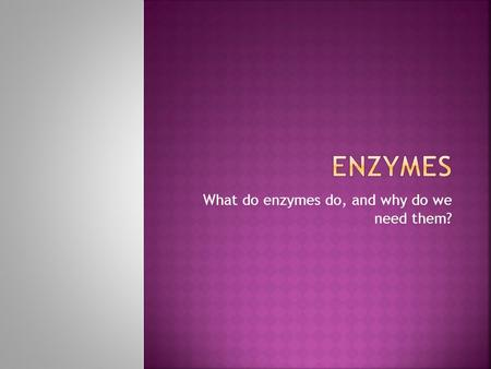 What do enzymes do, and why do we need them?