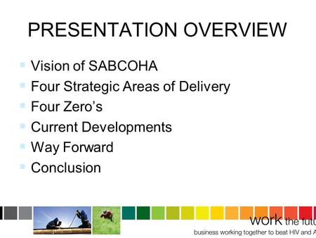 PRESENTATION OVERVIEW  Vision of SABCOHA  Four Strategic Areas of Delivery  Four Zero's  Current Developments  Way Forward  Conclusion.