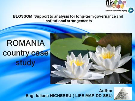 ROMANIA country case study BLOSSOM: Support to analysis for long-term governance and institutional arrangements Author Eng. Iuliana NICHERSU ( LIFE MAP-DD.