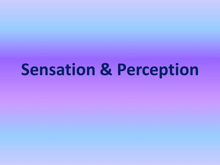 Sensation & Perception. Sensation: Process by which our sensory receptors and nervous system receive stimuli from the environment Perception: Process.