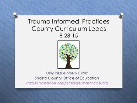 Trauma Informed Practices County Curriculum Leads 8-28-15 Kelly Rizzi & Shelly Craig Shasta County Office of Education