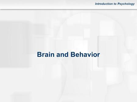 Introduction to Psychology Brain and Behavior. Introduction to Psychology FIGURE Subparts of the nervous system.