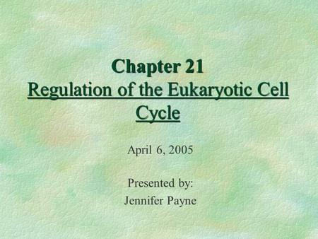 Chapter 21 Regulation of the Eukaryotic Cell Cycle April 6, 2005 Presented by: Jennifer Payne.