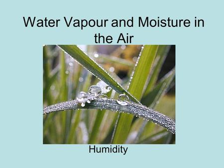 Water Vapour and Moisture in the Air Humidity. We know there is water in the air! Clouds Dew on grass in the mornings Fog Humidity.