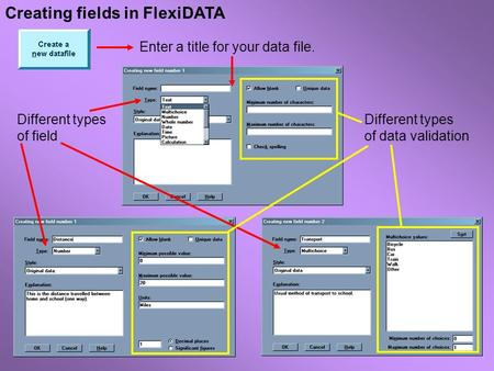 Creating fields in FlexiDATA Enter a title for your data file. Different types of field Different types of data validation.