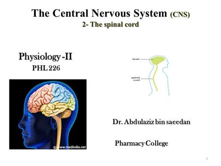 (CNS) 2- The spinal cord The Central Nervous System (CNS) 2- The spinal cord Physiology -II Physiology -II PHL 226 PHL 226 Dr. Abdulaziz bin saeedan Dr.