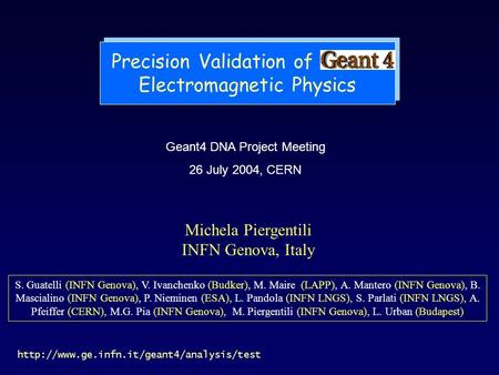 Precision Validation of Geant4 Electromagnetic Physics Geant4 DNA Project Meeting 26 July 2004, CERN  Michela.