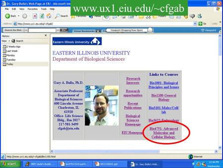 "Www.ux1.eiu.edu/~cfgab. …and powerpoint files www.ux1.eiu.edu/~cfgab Lectures saved as Html files.. Click on ""Part I-Overview"""
