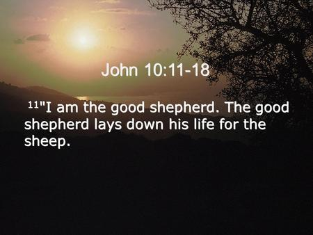 John 10:11-18 11 I am the good shepherd. The good shepherd lays down his life for the sheep.