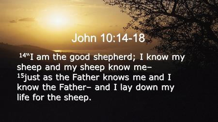 "John 10:14-18 14 ""I am the good shepherd; I know my sheep and my sheep know me– 15 just as the Father knows me and I know the Father– and I lay down my."