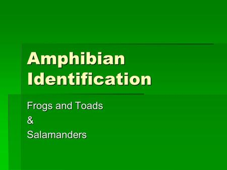 Amphibian Identification Frogs and Toads &Salamanders.
