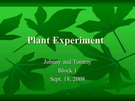 Plant Experiment Johnny and Tommy Block 1 Sept. 18, 2008.