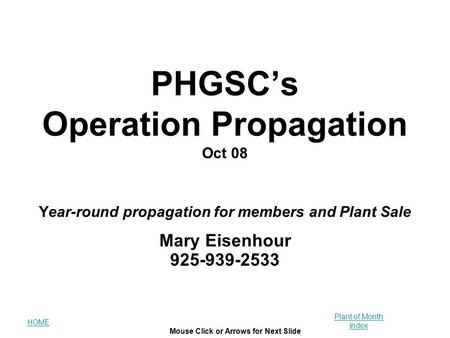 HOME Mouse Click or Arrows for Next Slide Plant of Month Index PHGSC's Operation Propagation Oct 08 Year-round propagation for members and Plant Sale Mary.
