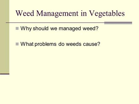 Weed Management in Vegetables Why should we managed weed? What problems do weeds cause?
