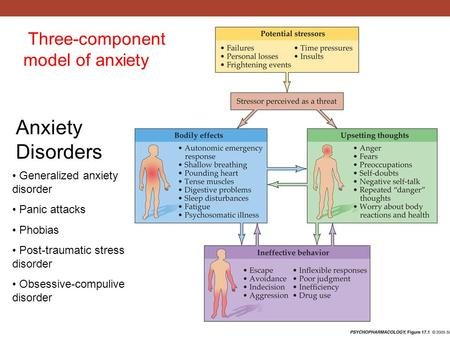Three-component model of anxiety Anxiety Disorders Generalized anxiety disorder Panic attacks Phobias Post-traumatic stress disorder Obsessive-compulive.
