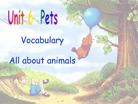Vocabulary All about animals Who am I I am colorful, but I can't live without water. I have long nose. I am the biggest animal on land. I am black and.