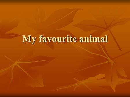 My favourite animal.