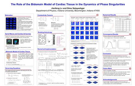 The Role of the Bidomain Model of Cardiac Tissue in the Dynamics of Phase Singularities Jianfeng Lv and Sima Setayeshgar Department of Physics, Indiana.