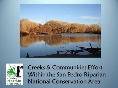 Creeks & Communities Effort Within the San Pedro Riparian National Conservation Area.