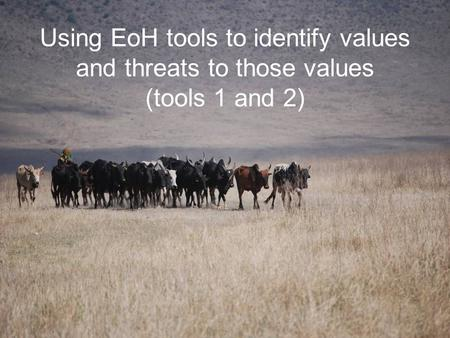 Using EoH tools to identify values and threats to those values (tools 1 and 2)