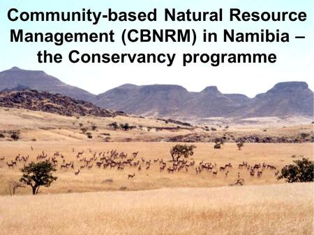 Community-based Natural Resource Management (CBNRM) in Namibia – the Conservancy programme.