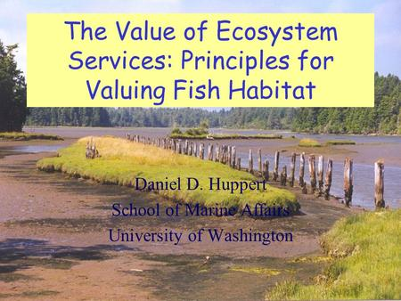 The Value of Ecosystem Services: Principles for Valuing Fish Habitat Daniel D. Huppert School of Marine Affairs University of Washington.