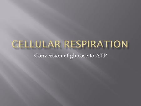 Conversion of glucose to ATP.  1. Overview  2. Purpose: To Get ATP!  3. Electron Carrier Molecules  4. Mitochondria  5. The Basics of Cell Respiration.