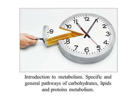 Introduction to metabolism. Specific and general pathways of carbohydrates, lipids and proteins metabolism.