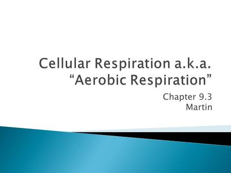Chapter 9.3 Martin.  Cellular respiration: the process by which mitochondria break down food molecule to form ATP ◦ Happens in 3 stages  1. Glycolosis: