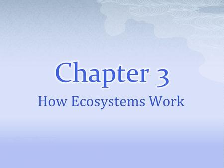 How Ecosystems Work. Section 1  Because plants make their own food, they are called producers.  Producers are also called autotrophs, or self-feeders.