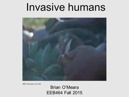 Invasive humans Brian O'Meara EEB464 Fall 2015 BBC Monsters We Met.