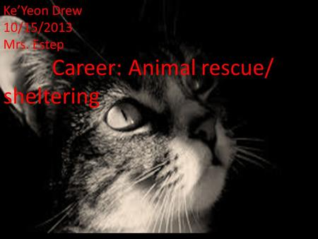 Ke'Yeon Drew 10/15/2013 Mrs. Estep Career: Animal rescue/ sheltering.
