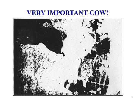 "VERY IMPORTANT COW! 1. Shifts in Demand CHANGES IN DEMAND Ceteris paribus-""all other things held constant."" When the ceteris paribus assumption is dropped,"