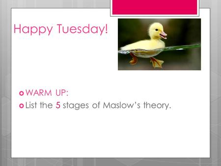 Happy Tuesday!  WARM UP:  List the 5 stages of Maslow's theory.