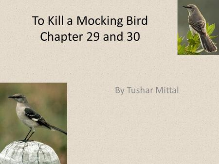 To Kill a Mocking Bird Chapter 29 and 30 By Tushar Mittal.