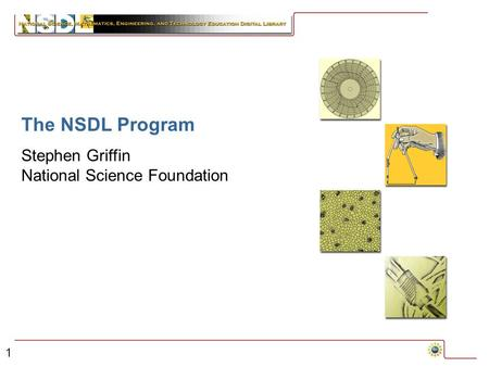1 The NSDL Program Stephen Griffin National Science Foundation.