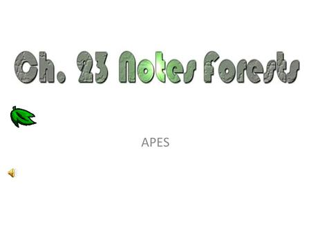 APES. Importance of Forests Economic - housing, fuelwood, paper, medicines, resins, gums, dyes, lumber, <strong>jobs</strong>, recreation - lands are used for mining,