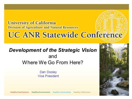 Development of the Strategic Vision and Where We Go From Here? Dan Dooley Vice President.