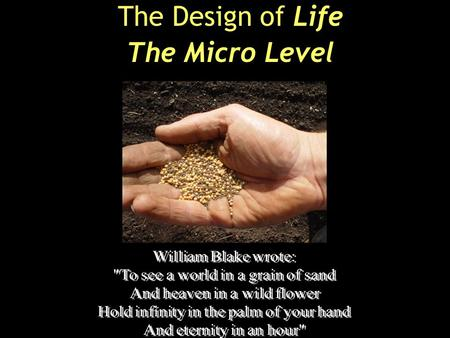 The Design of Life The Micro Level. Boo!
