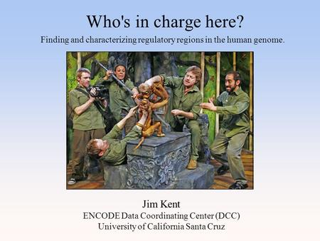 Who's in charge here? Jim Kent ENCODE Data Coordinating Center (DCC) University of California Santa Cruz Finding and characterizing regulatory regions.