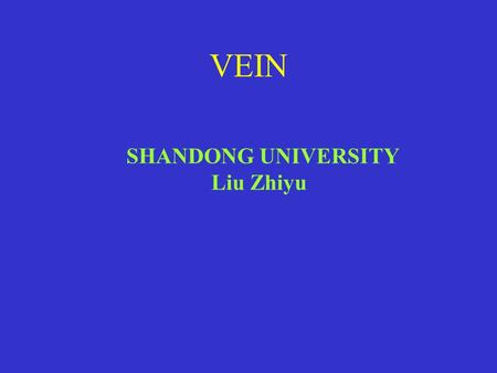 VEIN SHANDONG UNIVERSITY Liu Zhiyu 1 、 Capilaris 2 . Have a thinner wall and a larger diameter than their corresponding arteries 4. Form venous plexus.