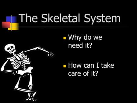 The Skeletal System Why do we need it? How can I take care of it?