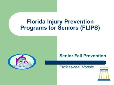 Florida Injury Prevention Programs for Seniors (FLIPS) Senior Fall Prevention Professional Module.