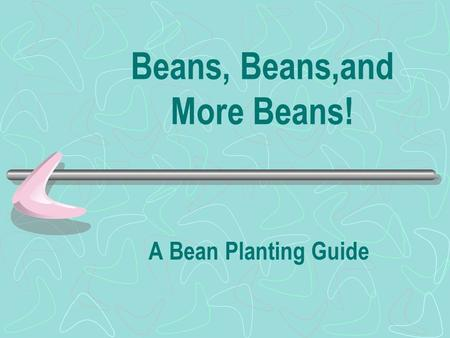 Beans, Beans,and More Beans! A Bean Planting Guide.