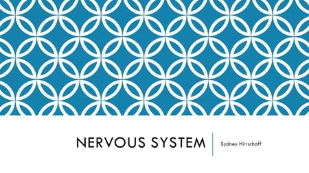NERVOUS SYSTEM Sydney Hirrschoff. NERVOUS SYSTEM FUNCTION The nervous system is made up of the brain, spinal cord, sensory organs, and all of the nerves.