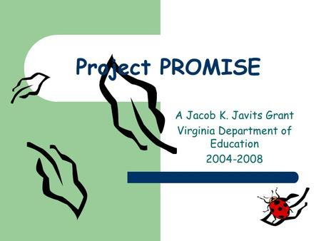 Project PROMISE A Jacob K. Javits Grant Virginia Department of Education 2004-2008.
