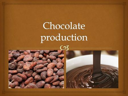   Chocolate production starts with harvesting cocoa beans in a forest  Cocoa beans come from tropical evergreen cocoa trees (Theobroma Cocoa) growing.