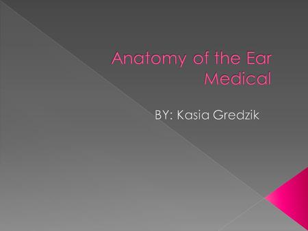 Anatomy of the Ear Medical