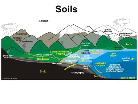 Soils. We know more about the movement of celestial bodies than about the soil underfoot. - Leonardo da Vinci.